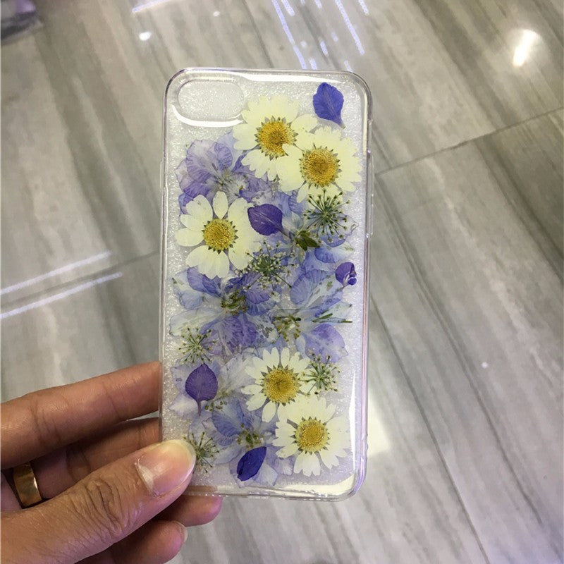 Dried Daisy Case