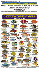 DIVERS FISH IDENTIFICATION CARD (SLATE) - Great Barrier Reef, Coral Reef Fishes, Turtles & Rays / FG008L