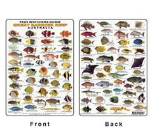 Divers Fish Identification Card (Slate) - Great Barrier Reef, Fishwatchers Guide / FG009L