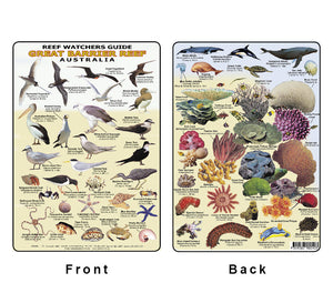 Divers Fish Identification Card (Slate) - Great Barrier Reef, Reef Watchers Guide / FG010L