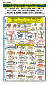 Fishermans Fish Identification Card (Slate) - Western Australia / FG015L