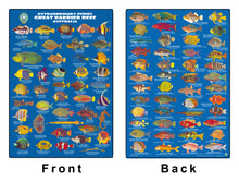 DIVERS FISH IDENTIFICATION CARD (SLATE) - Great Barrier Reef, Extraordinary Fishes / FG030L