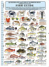 Fishermans Fish Identification Card (Slate) - Qld & Great Barrier Reef / FG020L