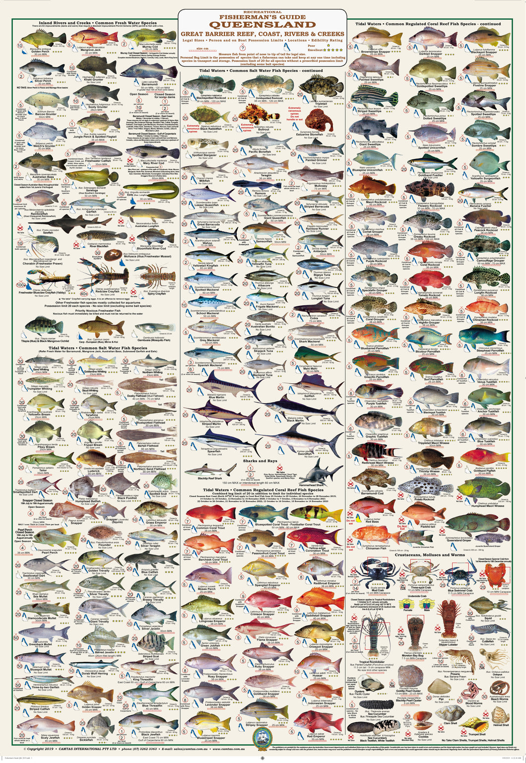 Fishermans Fish Identification - Qld. and Great Barrier Reef, Fisherman's Guide - Camtas Wall Chart / WCAF170
