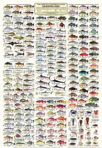 QLD Boating, Fishing, Camtas Marine Safety Chart - HERVEY BAY to NORTH REEF, Bundaberg, Seventy Seventy / MC610
