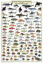 QLD Boating, Fishing, Camtas Marine Safety Chart - HINCHINBROOK ISLAND to CAIRNS OFFSHORE, GREAT BARRIER REEF REGION / MC700