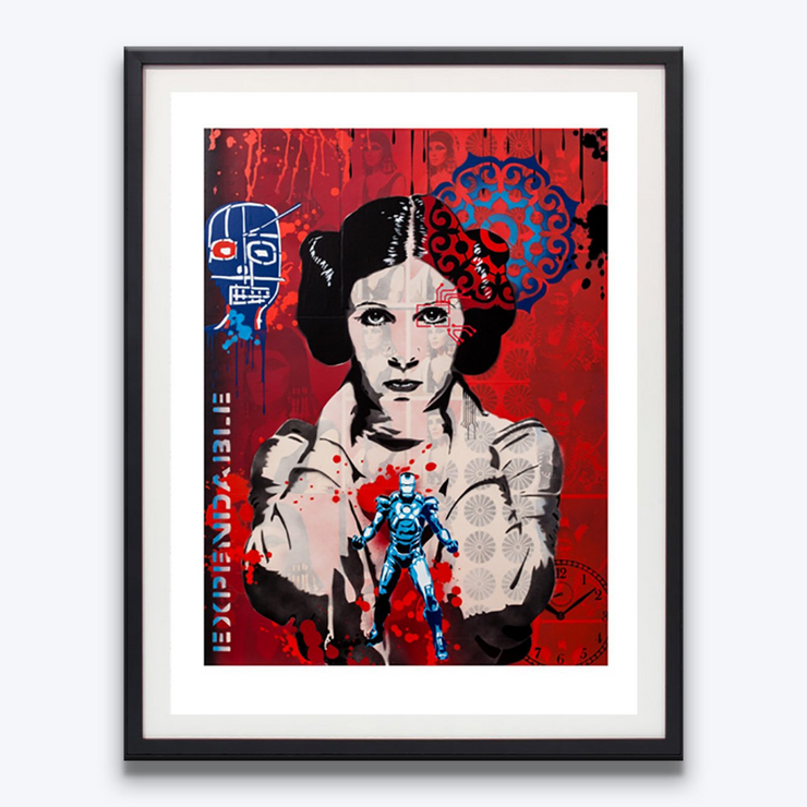 Boyd-Dunlop Gallery Napier Hawkes Bay Brad Novak New Blood Pop Pop Artist Kiwiana  Princess Leia Star Wars
