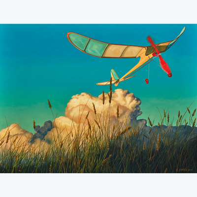 Boyd-Dunlop Gallery Napier Hawkes Bay Ross Jones Original Oil Painting Landscape Surrealism Realism Scenic Artist Plane Clouds