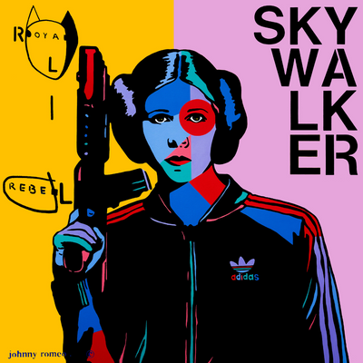 Boyd-Dunlop Gallery Napier Hawkes Bay Johnny Romeo Pop Art Limited Edition Prints Star Wars Princess Leia