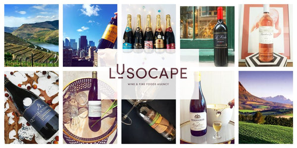Lusocape Wines