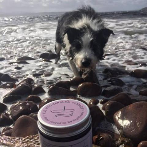 No 1 : Scout Dog. Sea Salt & Driftwood, Luxury Candle Jar
