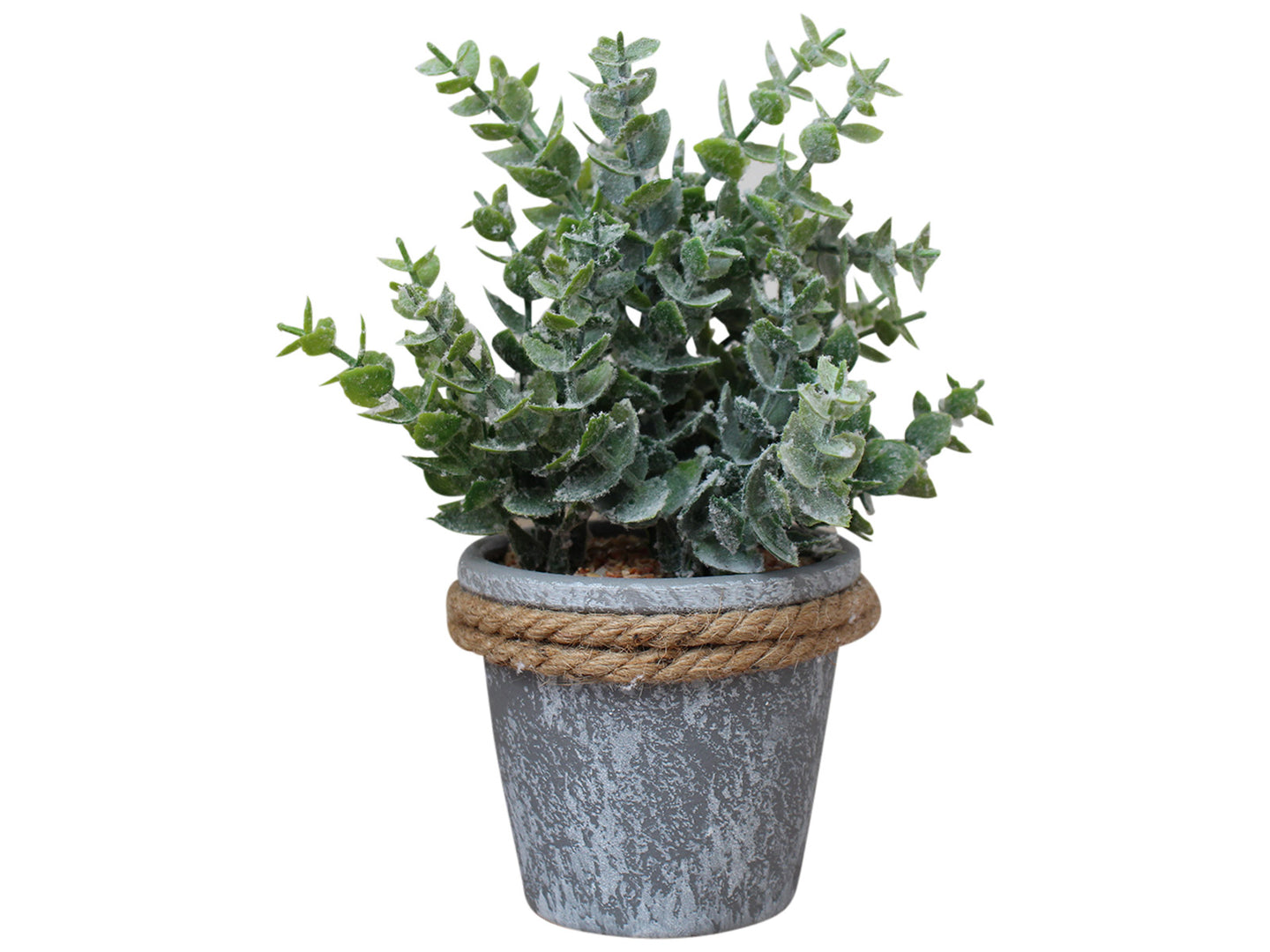 GUM LEAF POT WITH ROPE