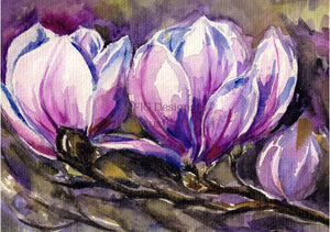 HEAVEN SCENT MAGNOLIAS - FIG DESIGN AUSTRALIA