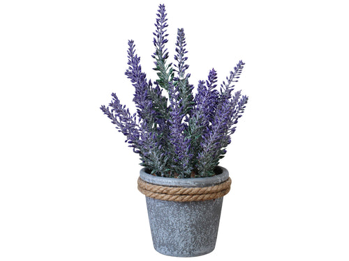 LAVENDER POT WITH ROPE