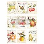 SWEET APRICOT *** RE-DESIGN WITH PRIMA TRANSFER
