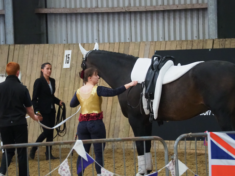 Busy Vaulting Life With Lizzie Bennett 3