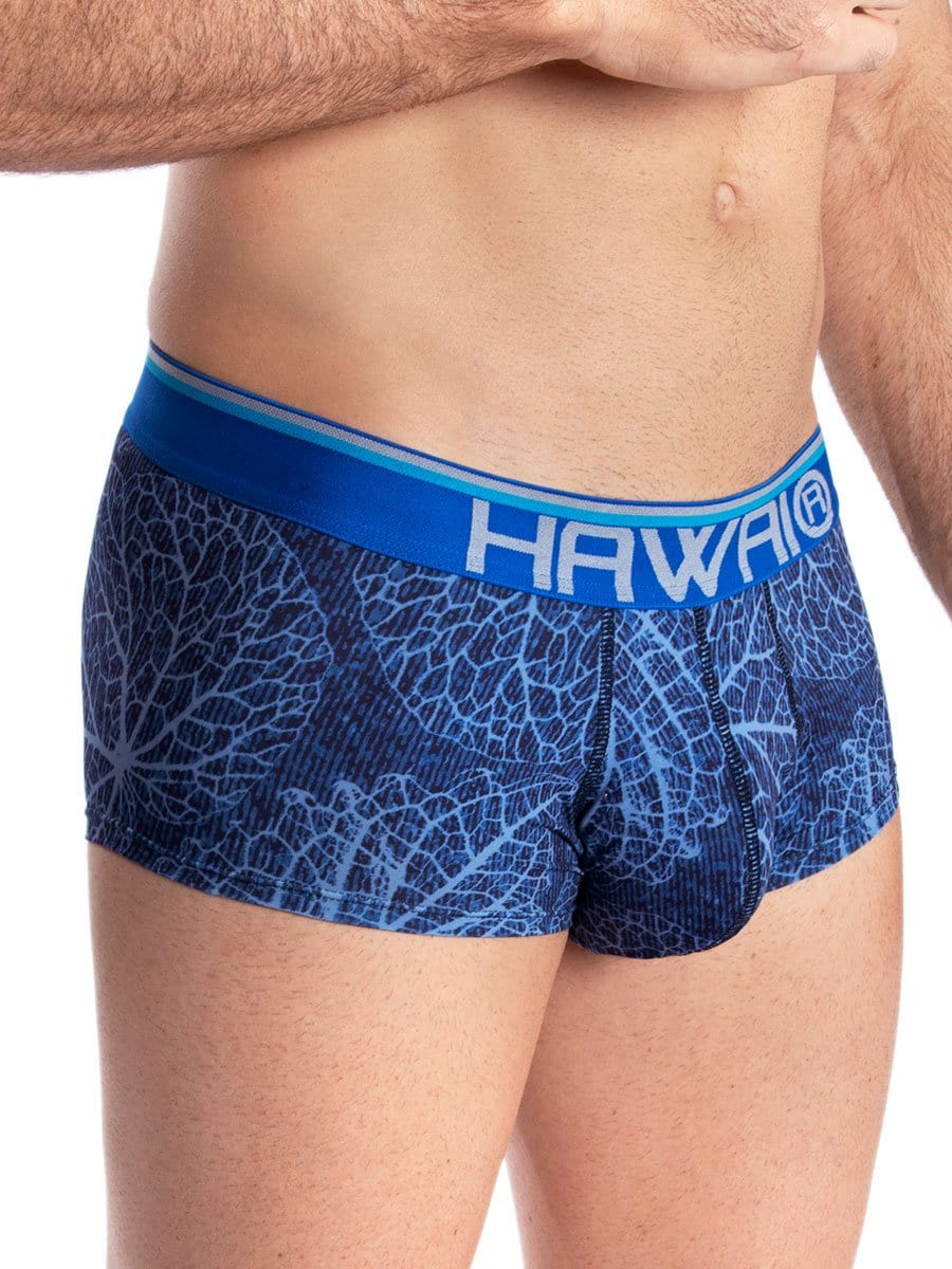 Bóxer Brief Estampado Azul Rey