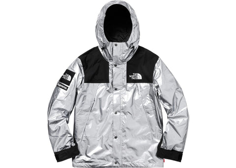 Supreme The North Face Metallic Mountain Parka Silver