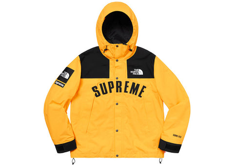 Supreme The North Face Arc Logo Mountain Parka