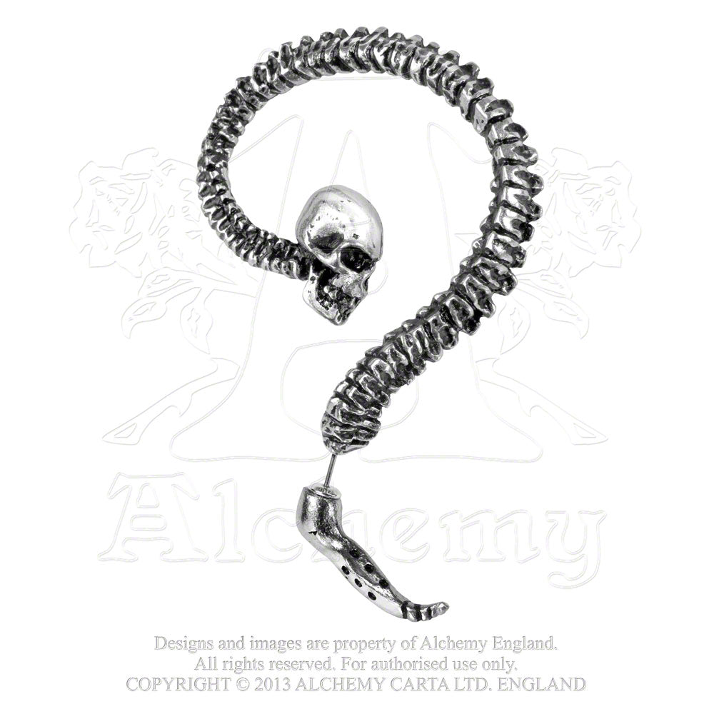 Alchemy Gothic Spine Ear Wrap from Gothic Spirit