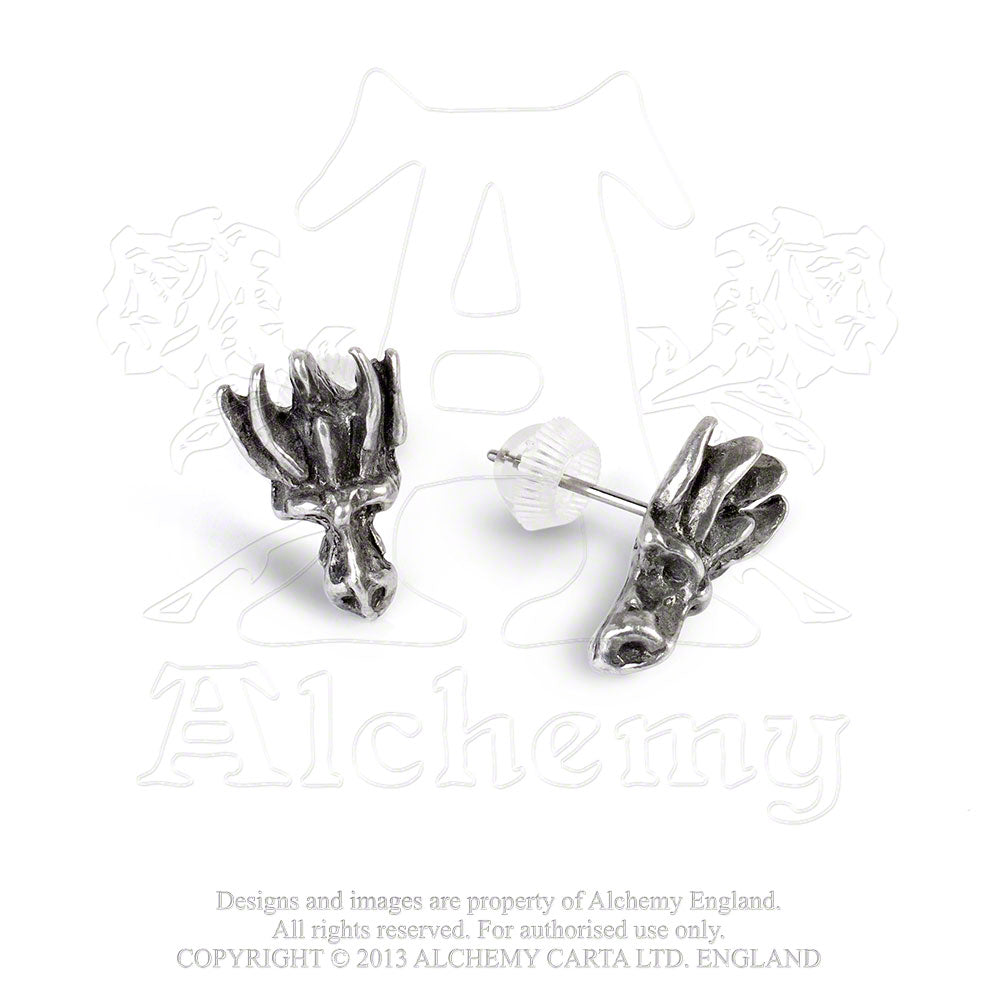 Alchemy Gothic Dragon's Lure Head Stud Pair of Earrings - Gothic Spirit