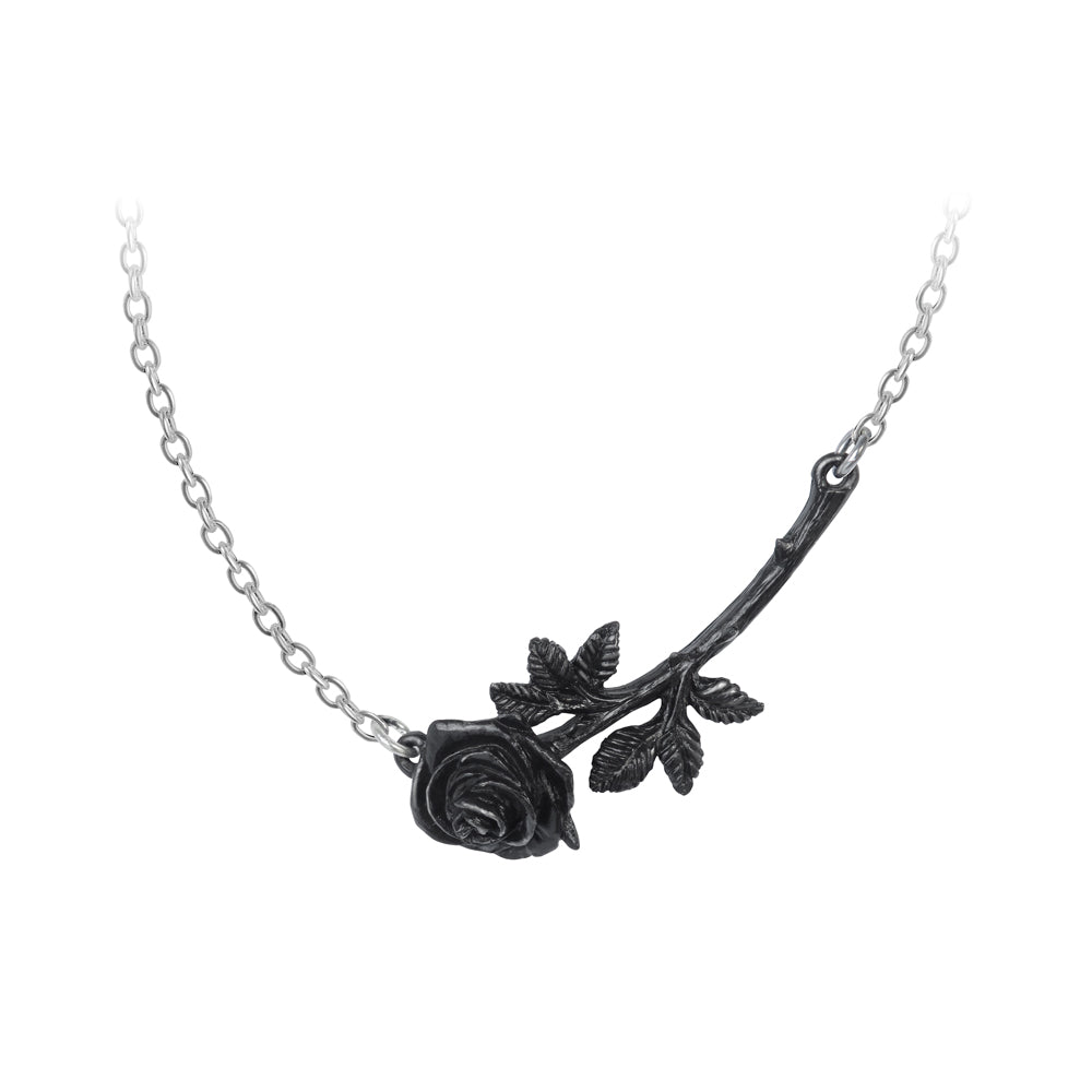 Alchemy Gothic Black Rose Enigma Pendant from Gothic Spirit