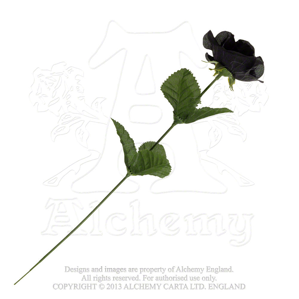 Alchemy Gothic Single Rose from Gothic Spirit