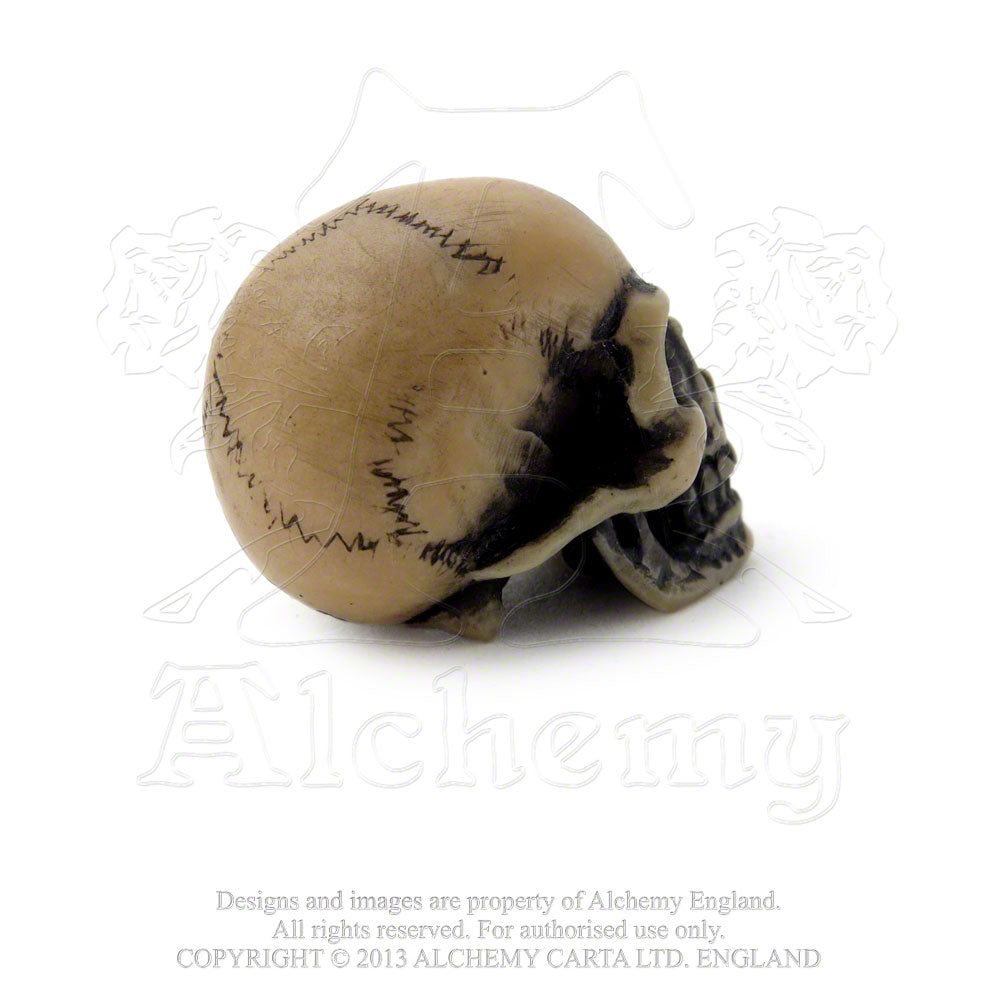 Alchemy - The Vault Lapillus Worry Skull from Gothic Spirit