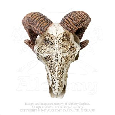 Alchemy - The Vault Scrimshaw Ram Skull from Gothic Spirit