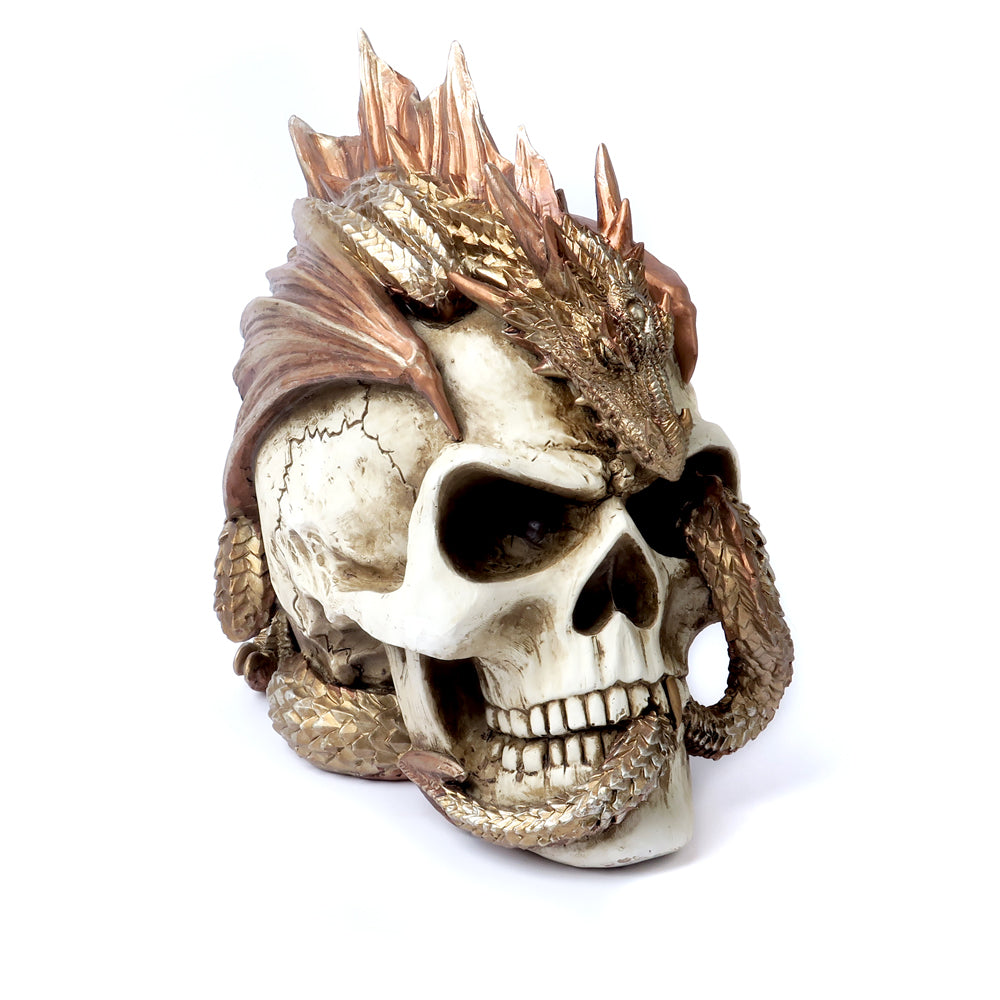 Alchemy - The Vault Dragon Keeper's Skull from Gothic Spirit