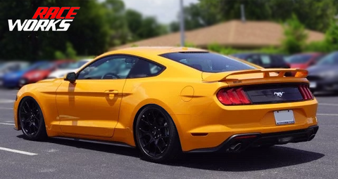 RaceWorks Ford Mustang Coilovers