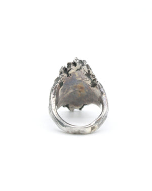 Tobias WIstisen Wood Plate Ring