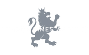 Samuel James Watches Automatic Mechanical Movement Made In USA