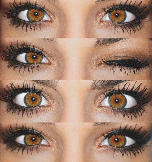 Hazel And Brown Contact Lenses