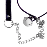 Frisky Kitty, Chiming Collar With Leash