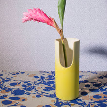 Load image into Gallery viewer, Isadora Vase