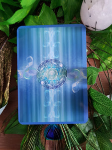 One Card Tarot/Oracle Reading