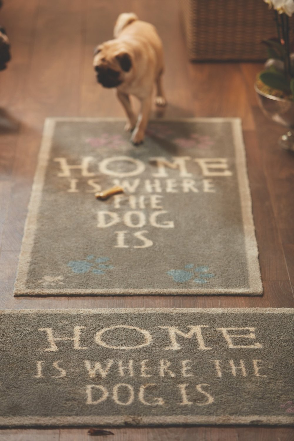 Home Is Where The Dog Is Runner