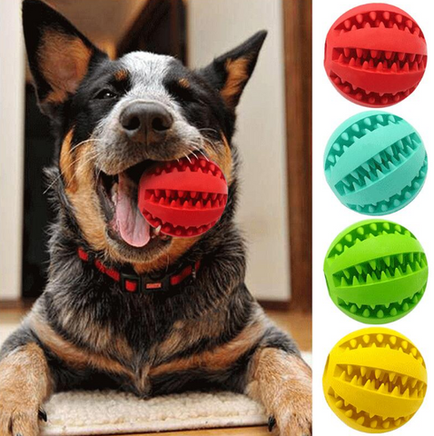 toys to keep dogs busy