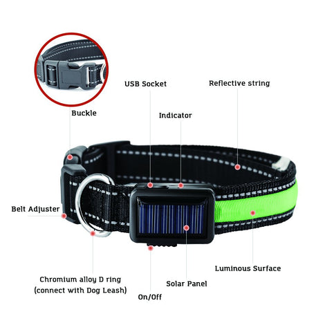 Solar Led Dog Collar