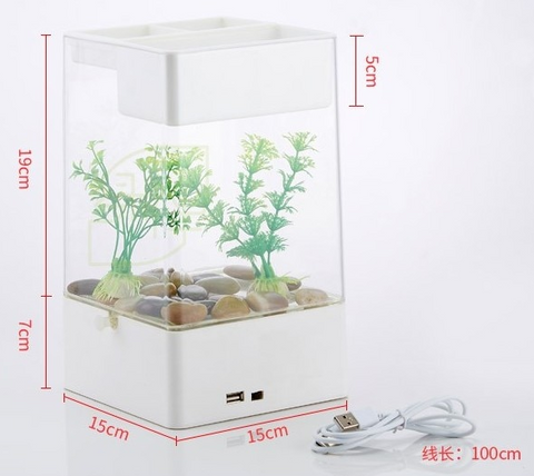 self sustaining aquarium