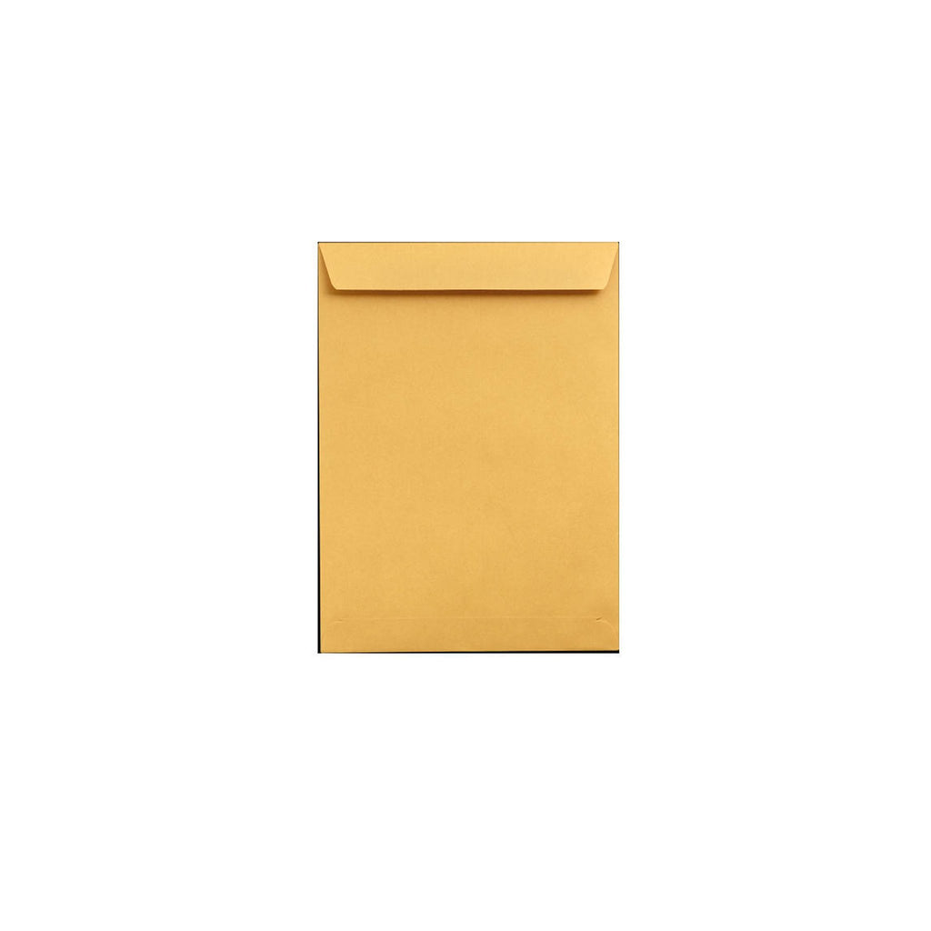 Temrex  X-Ray Envelopes 500/Box (950-0849224)
