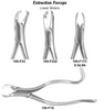 USA Delta Extraction Forceps Dental Instruments