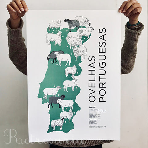 Portuguese Sheep Breeds poster wholesale (5 pcs.)