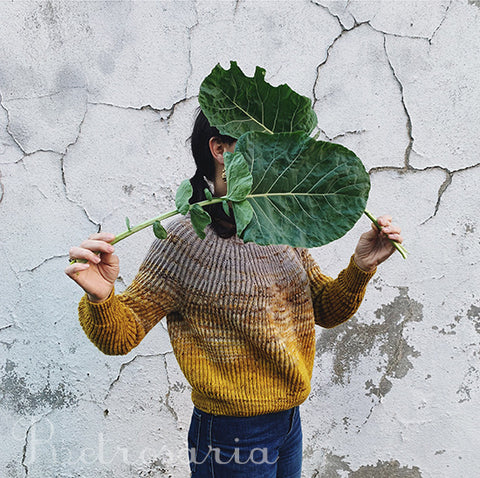 Kit camisola Cavalgante | Cavalgante sweater kit