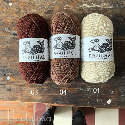 Pegulhal yarn by Rosa Pomar