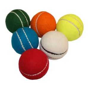 All Play Cricket Ball