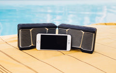 PARTY PAIRING™ Outdoor Speaker