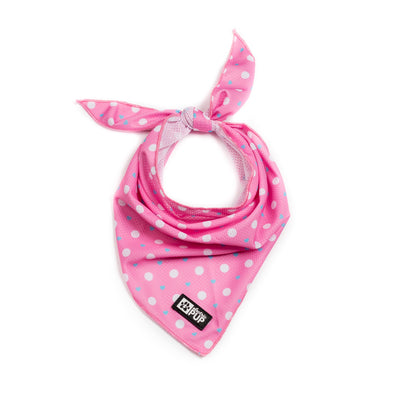 'Puppy Love' (Pink/Blue) Bandana