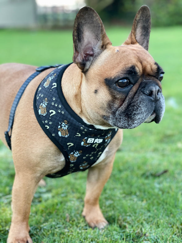 The Dogtective Reversible Harness